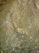 本厂长期采购热镀锌厂废料、锌灰