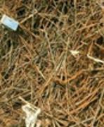 求购钢筋头:长期大量收购各种废旧金属