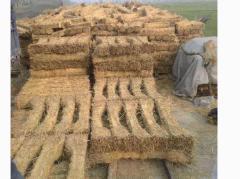 云南昆明大量出售草支垫