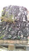 回收铝钴纸13510295250