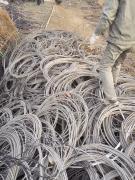 电线 铝线钢绞铝线