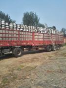 大量供应铝合金轮毂
