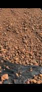印尼褐铁块矿