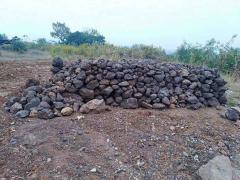 供应:出售锰矿石新钢检测中心,锰23.3,铁30.7,硫...